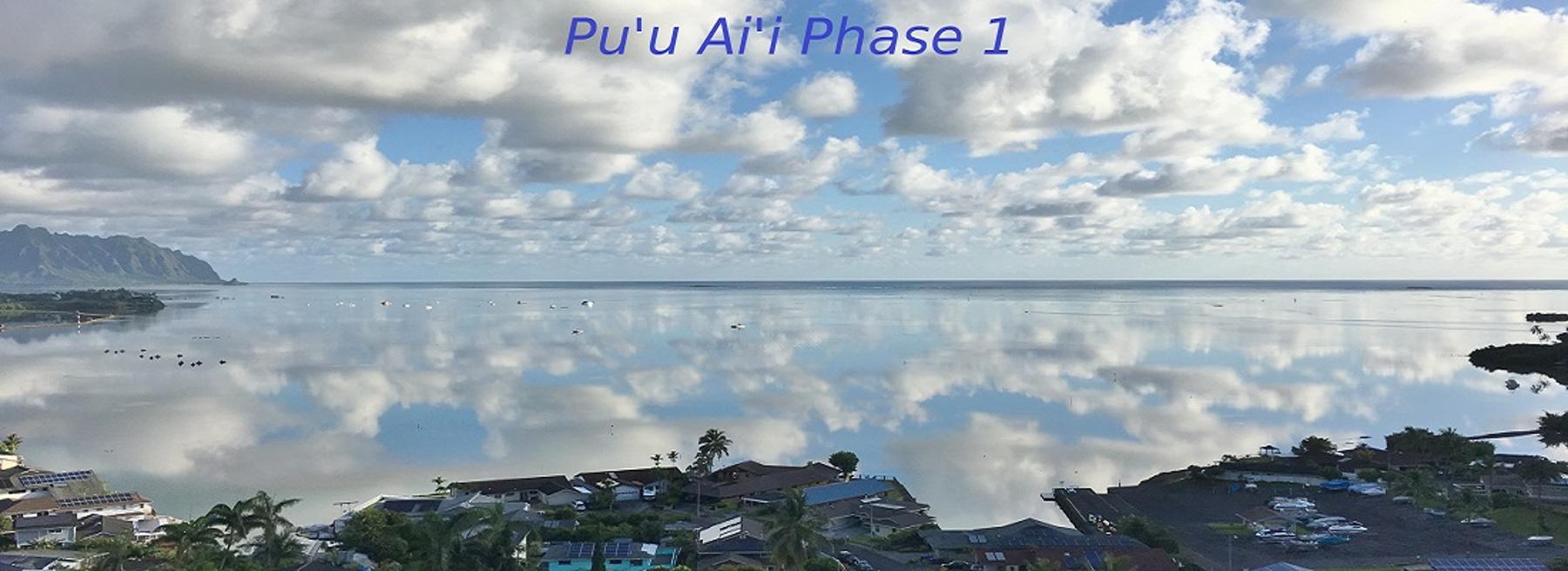 Puu Alii Phase I cover
